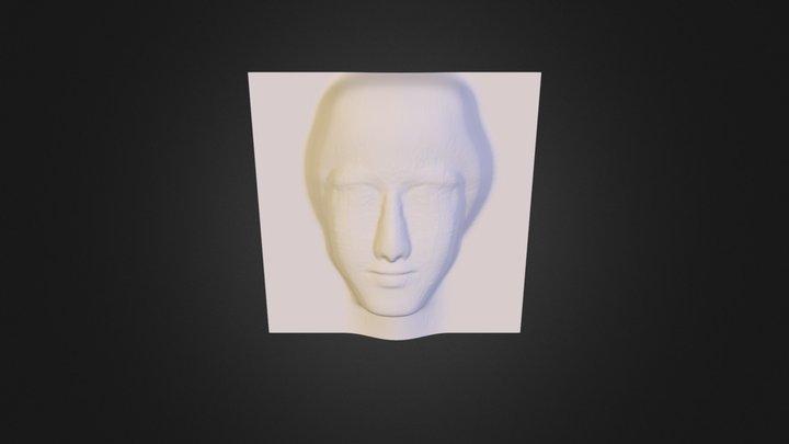 Relief 3D Model