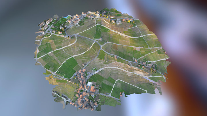 Flying over the beautiful Lavaux 3D Model