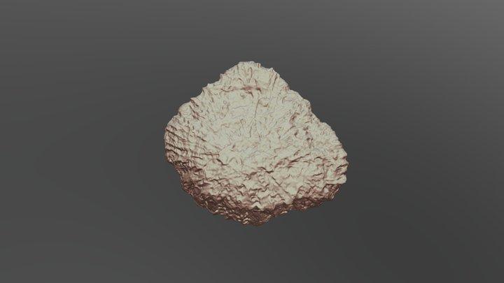 Scan pierre scanner 3D 3D Model