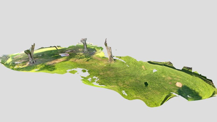 iPad Pro 2020 LIDAR scanning using Polycam App 3D Model