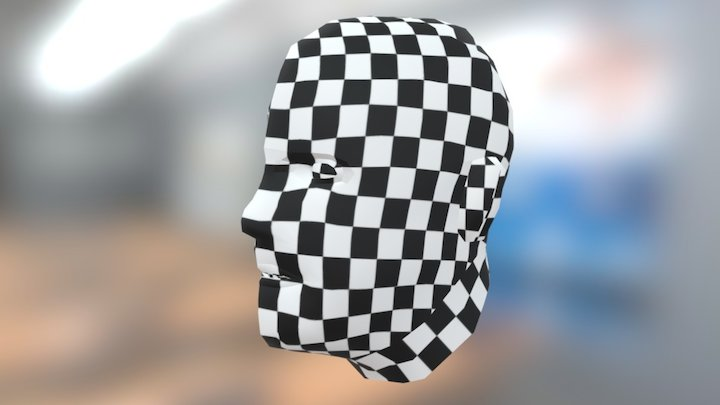 Human head (checkerboard textured) 3D Model