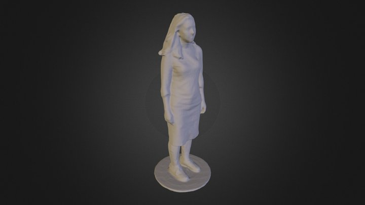 Tlic 3D Model