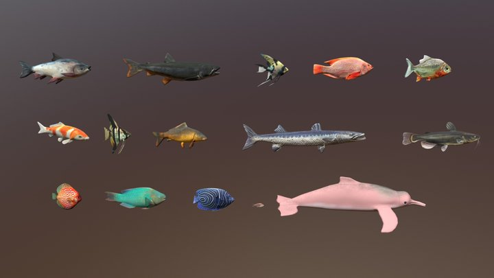 15 Freshwater Fish Pack - Low Poly Animals 3D Model