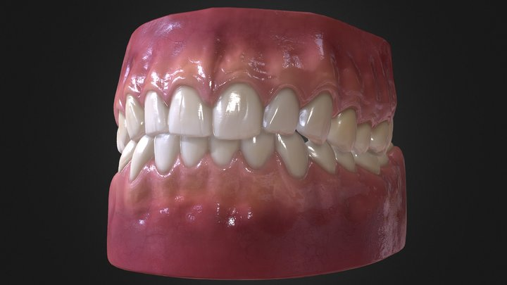 Teeth LP Triangulated 01 3D Model