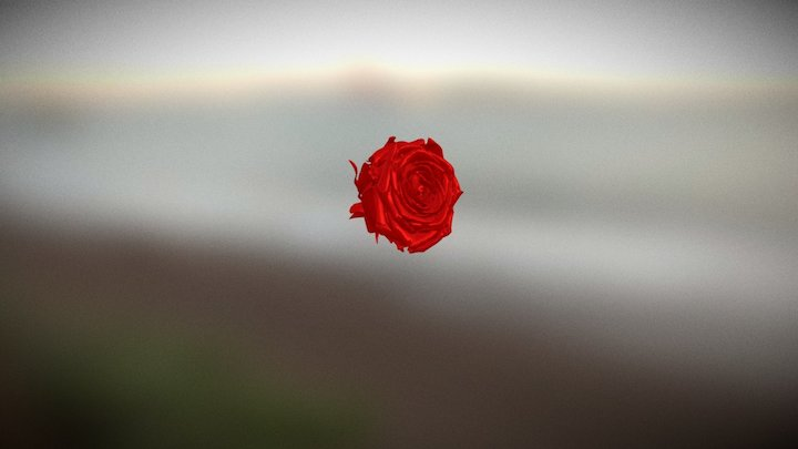 Scan roos Shining3D Einscan-Pro 3D Model