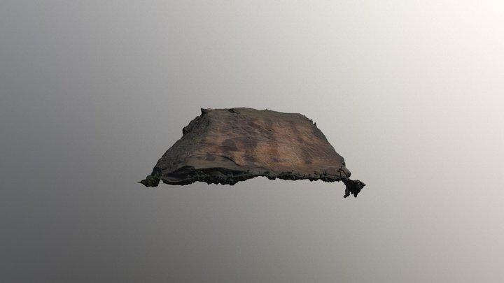 Hiwassee Rock Fragment, Back 3D Model