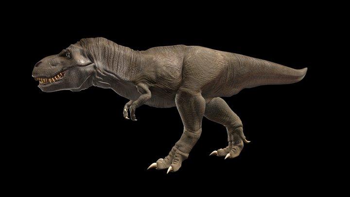 Tyrannosarus rex (Free model) 3D Model