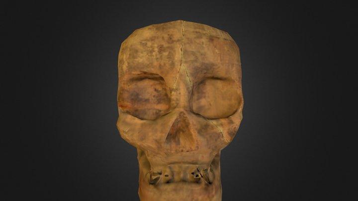 Skull Done 3D Model