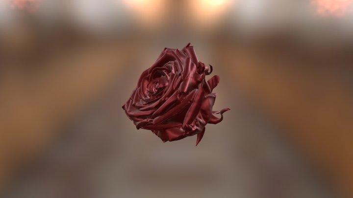 Scan roos Shining3D Einscan Pro 3D Model