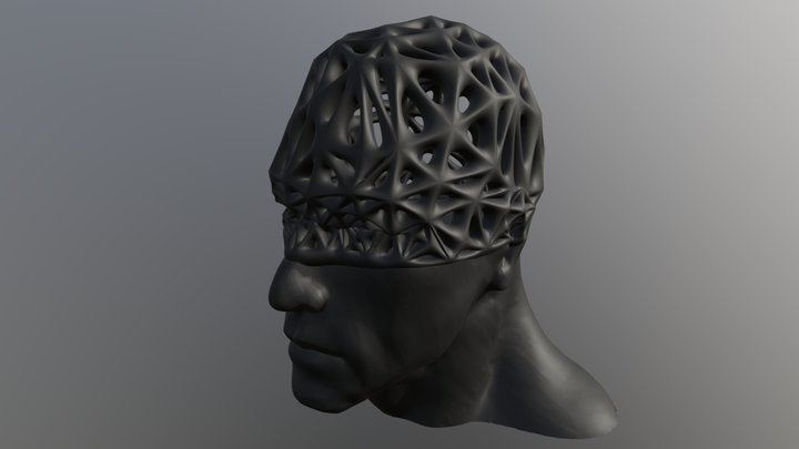 Male HSplit-Voronoi Head 3D Model