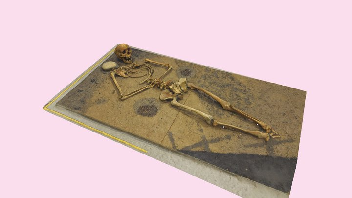 Reconstructed burial 3D Model