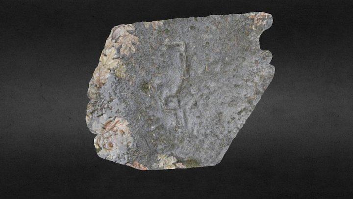 Gabriola Island Petroglyph #5