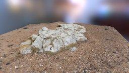 The Rock 3D Model