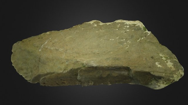 Louth County Museum Stone 3 3D Model