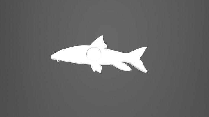 Barbo, Barbus barbus, Barbel 3D Model