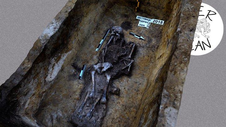 Поховання шестовицького воїна Х ст. 3D Model