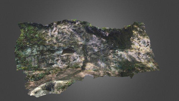 Caillou-qui-Bique : Couvinien 1 3D Model