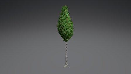 StylizedTree 01 3D Model