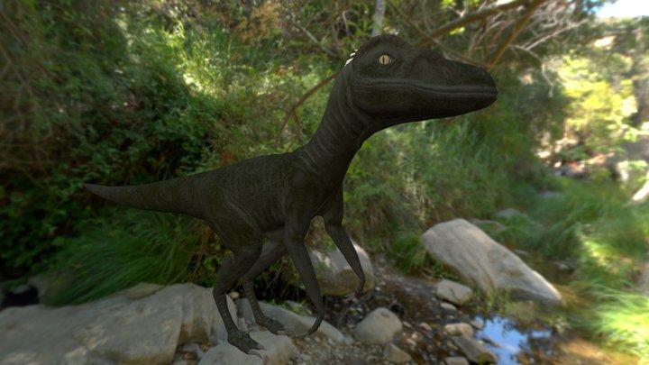 Velociraptor hatchling 3D Model