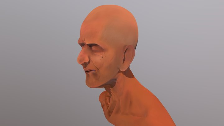 The Old Man 3D Model