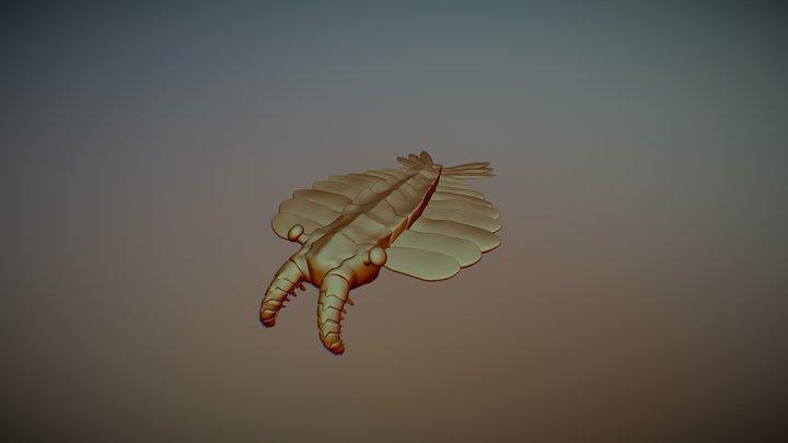 Anomalocaris2 3D Model