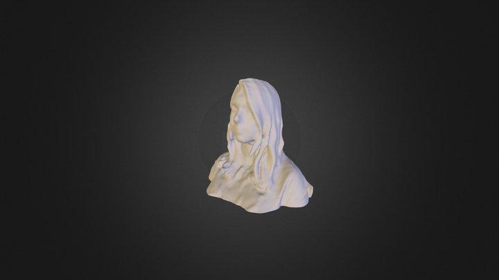 3D Scan Self Portrait-Lindsay 3D Model