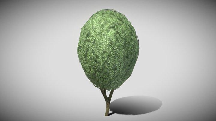 Boxwood Tree Version 3 3D Model