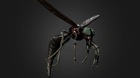 Insekt 3D Model