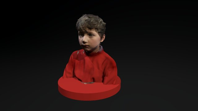 3D scan of a boy for a painting 3D Model