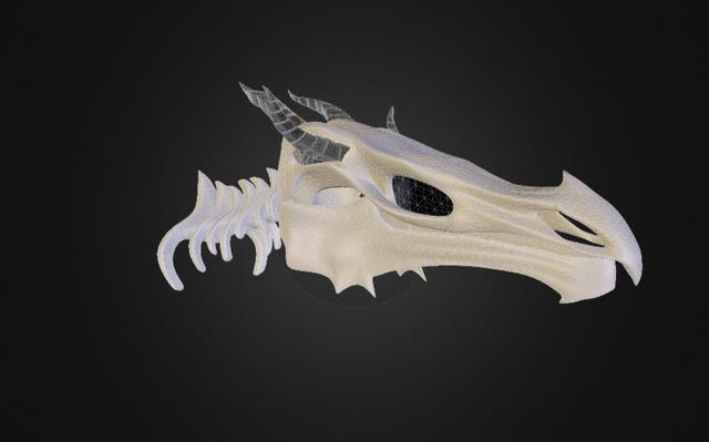 skyrim Skeleton Dragon Skull 3D Model