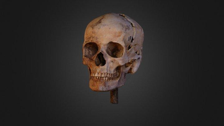 Burial 17 3D Model