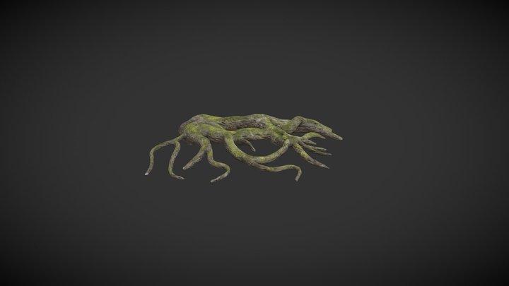 Tree Roots A 3D Model
