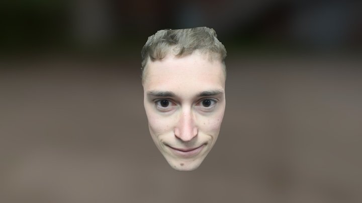 Colin's Face (just the front) 3D Model