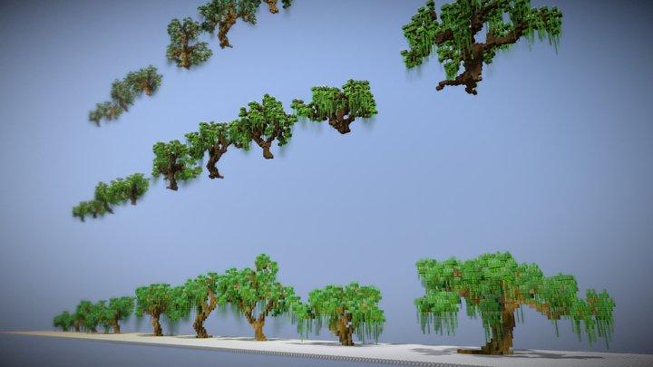 Willow Trees 3D Model