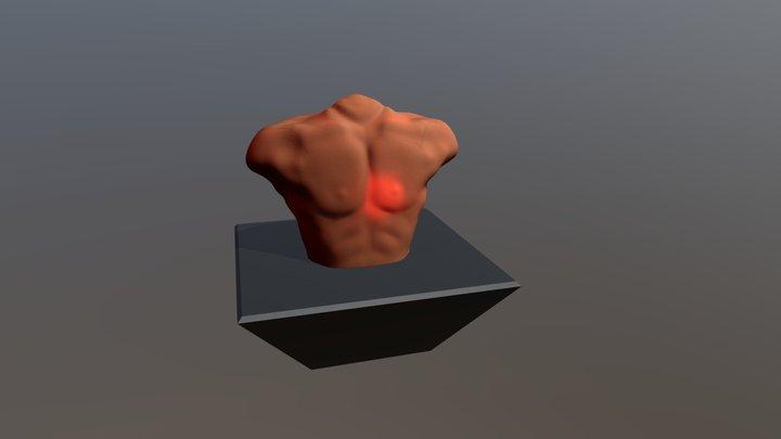 Torso V0 3D Model