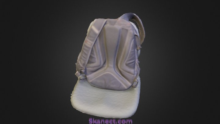 Bag Scan 3D Model