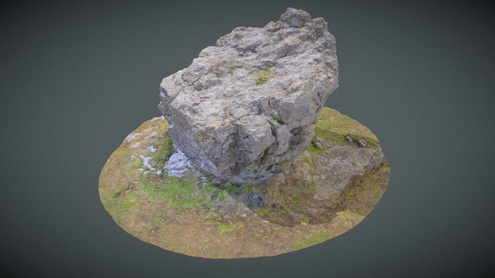 Great Orme Boulder photogrammetry 3D Model