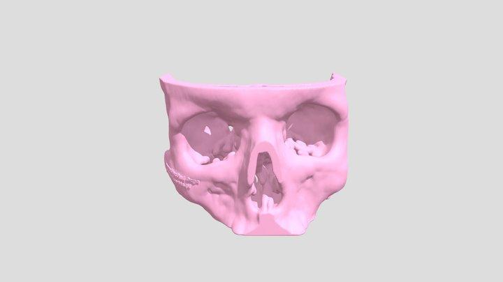 Skull03 3D Model