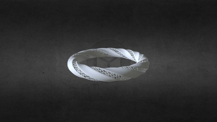 Modeling Triply Twisted Torus With Holes 3D Model