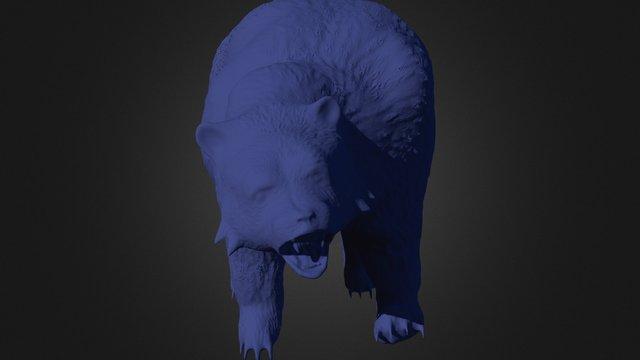 Senior Thesis Model Bear 3D Model