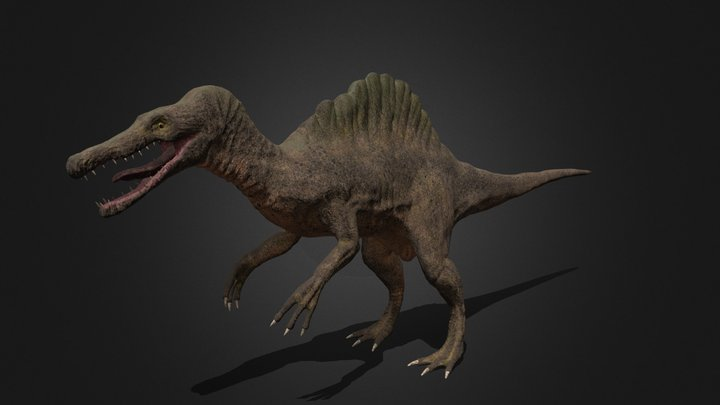 Female Spinosaurus 3D Model