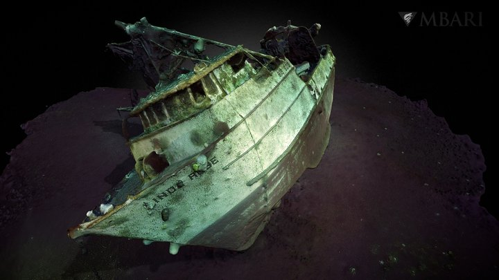 Wreckage of the Linda Rose 3D Model