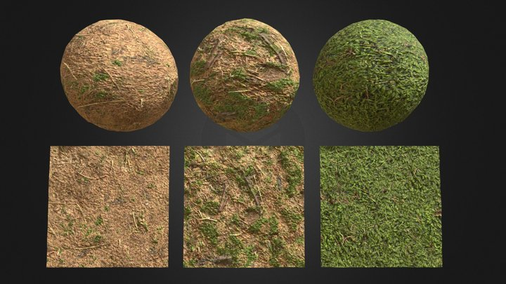 Forest Grounds Vol. 1 Materials 3D Model