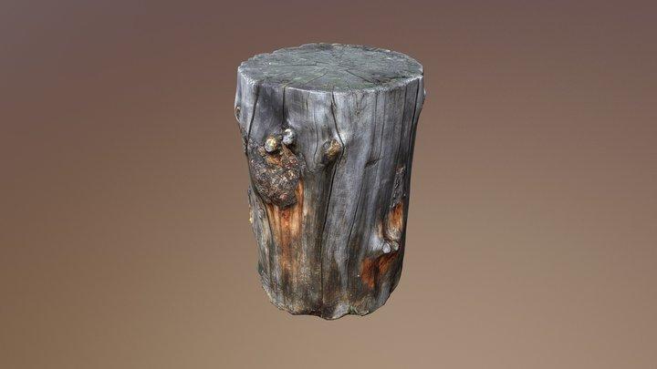 Log 01 3D Model