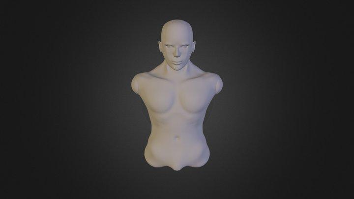 Head+ Shoulders 3D Model