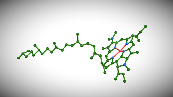 Molecular Structure 3D Model