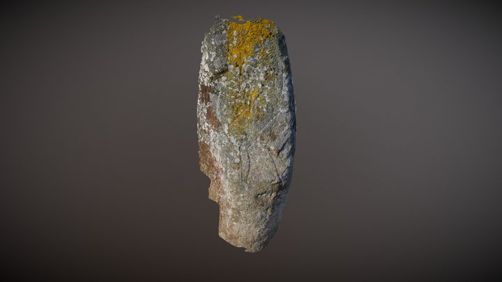 Pictish warrior carving near Collassie in Fife 3D Model
