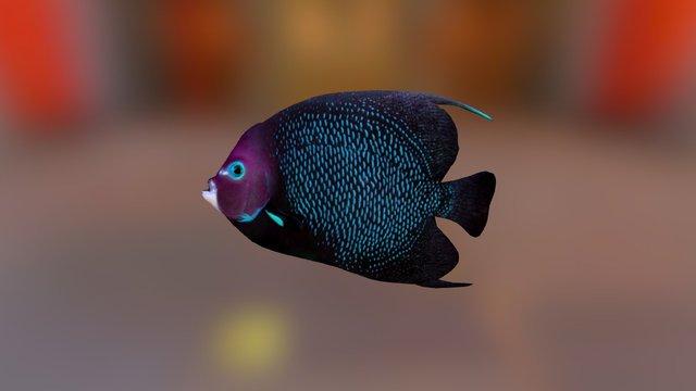 coral fish 3D Model