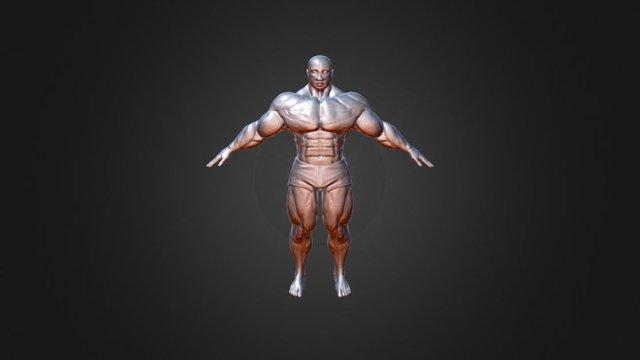 Body Sketch 02 3D Model