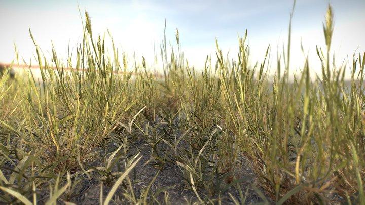 Simple grass chunks 3D Model
